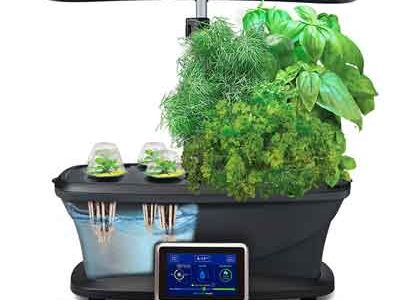 Get you Aerograden best way to grow fresh vegetables