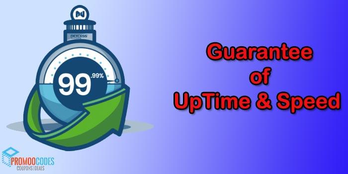 Uptime & Speed