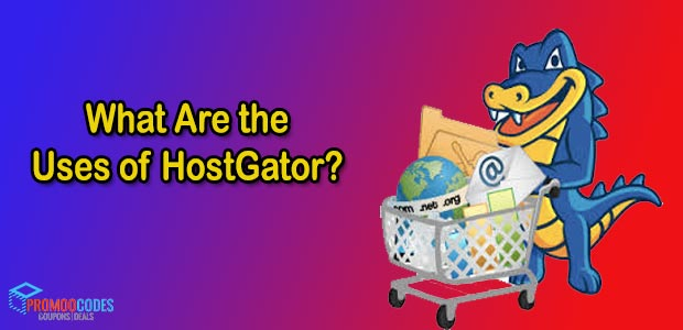 What the Uses of HostGator?