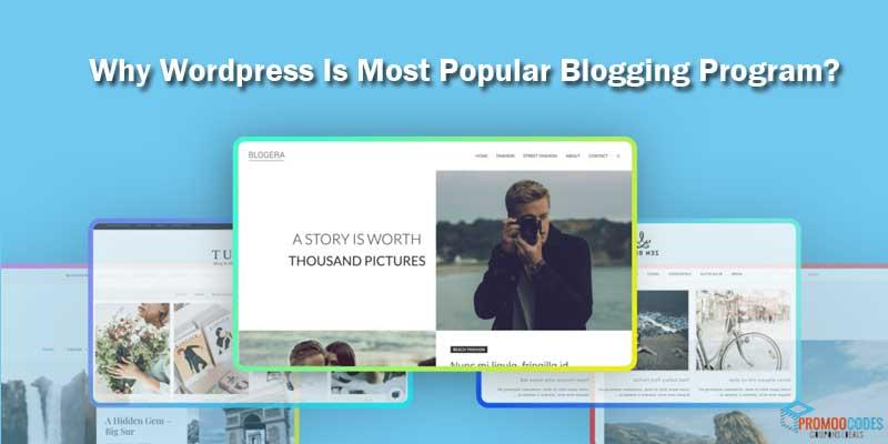 Why WordPress Is Most Popular Blogging Program
