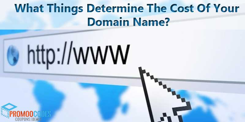 What Things Determine The Cost Of Your Domain Name