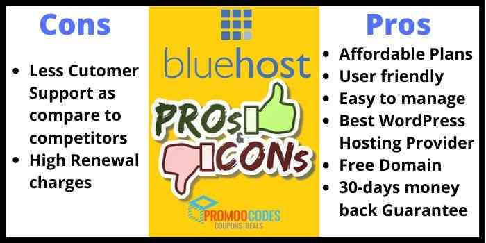 BlueHost Pros And Cons